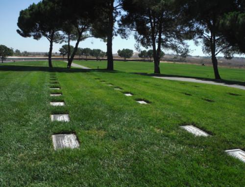 Frettolosa elaborazione del lutto con 15mila morti in Italia. Prof Carlini