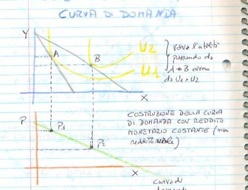 Domanda complessiva di mercato. Micro. Prof Carlini