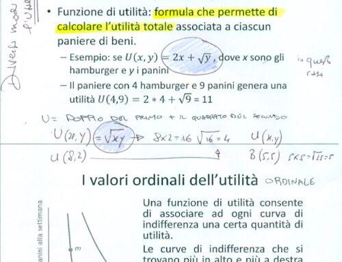 Funzione d'utilità in micro e sofferenza. Prof Carlini