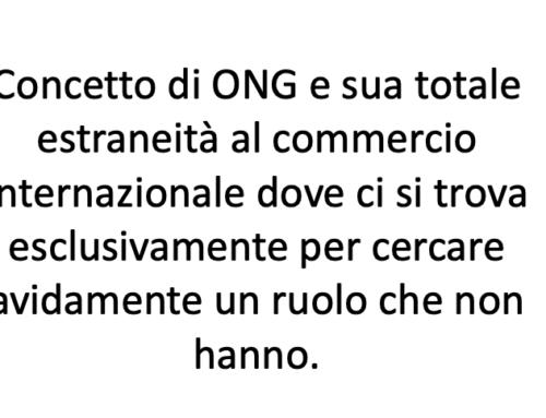 ONG una critica al vetriolo. Prof Carlini